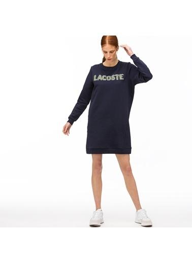 Lacoste Elbise Lacivert
